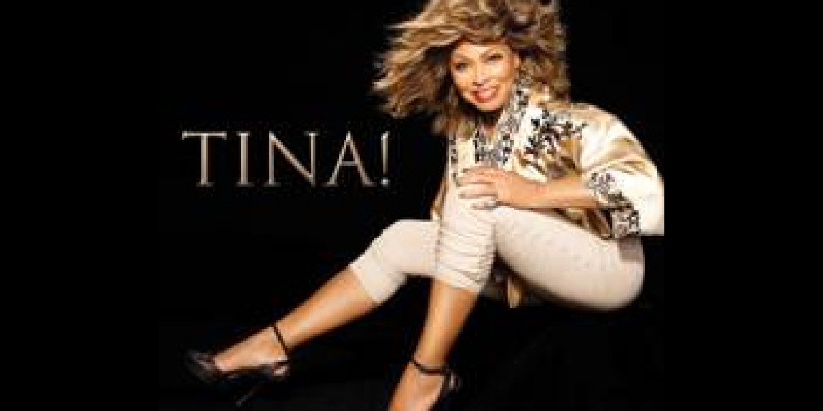 El regreso de Tina Turner: Tina!