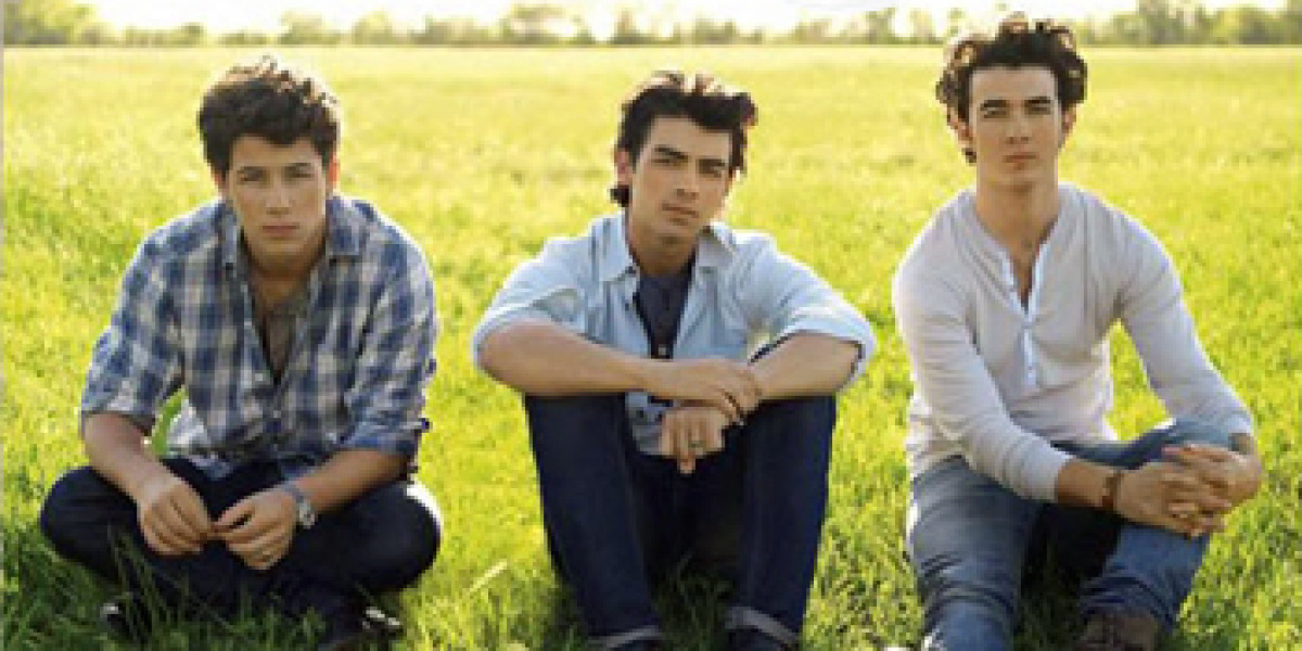 Jonas Brothers en Lines, Vines and Trying Times